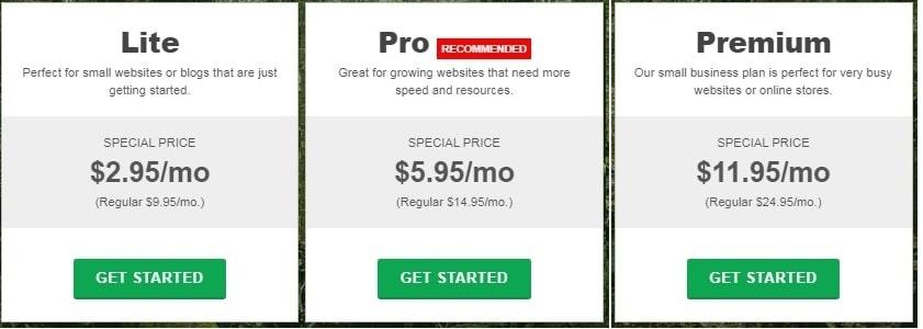 GreenGeeks Plan